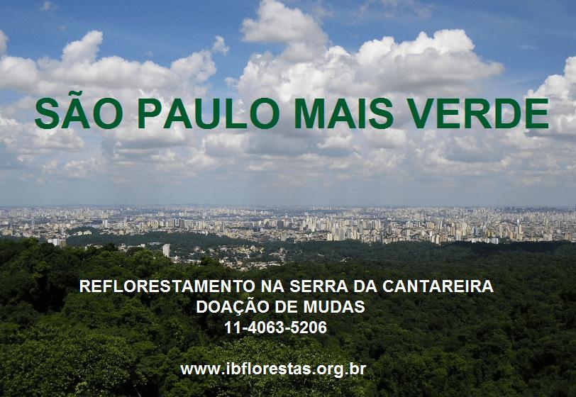 campanha de reflorestamento na Serra da Cantareira em São Paulo